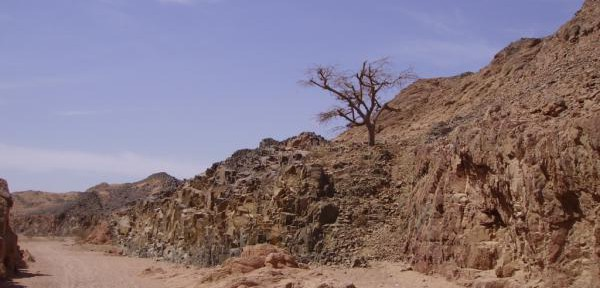 Wadi-5.jpg